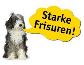 Hundepflegesalon Lucky  – Freital